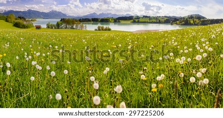 panorama landscape in Bavaria with alps mountains and meadow at spring - stock photo