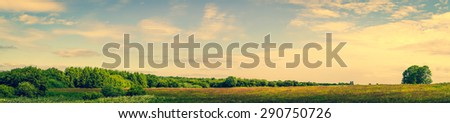 Panorama landscape of a prairie with green trees - stock photo