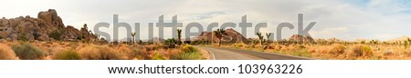Panorama landscape of Joshua Tree National Park, USA. Road going through park. - stock photo