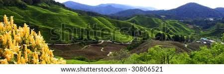 Panorama mountain landscape - stock photo