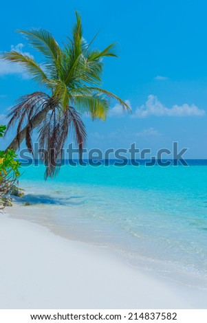Panorama of a tropical island with turquoise lagoon, white sand beach and palm trees. Bright blue sky with clouds low over the ocean. - stock photo