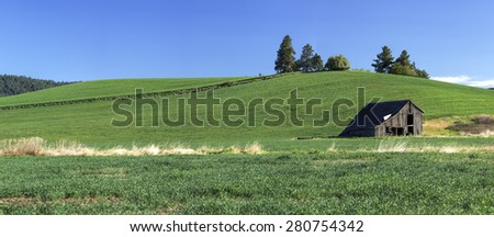 Panorama of barn in field near Potlach, Idaho. - stock photo