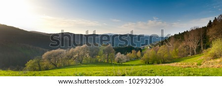 Panorama of black forest in south germany - stock photo