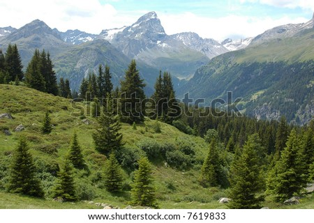 panorama of central european swiss alps / mountains and a little forest