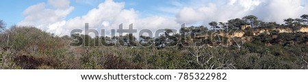 Panorama of desert landscape hills at Torrey Pines State Preserve near San Diego, California