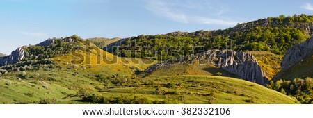 Panorama of hilly landscape with forests and hills of green grass and yellow heathers, in spring - stock photo
