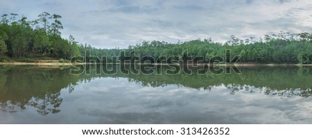 Panorama of pine forest reflection on water - stock photo