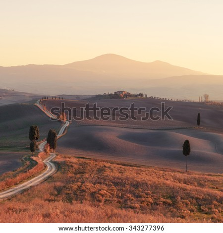 Panorama of sunny Tuscany valley. Tuscany, Italy, Europe.