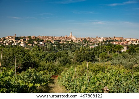 panorama of the city of Siena in Tuscany in summer
