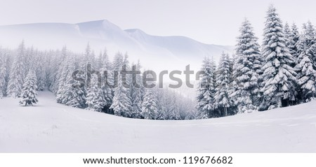 Panorama of the foggy winter landscape in the mountains - stock photo