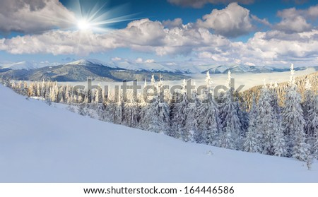 Panorama of the foggy winter morning in mountains - stock photo