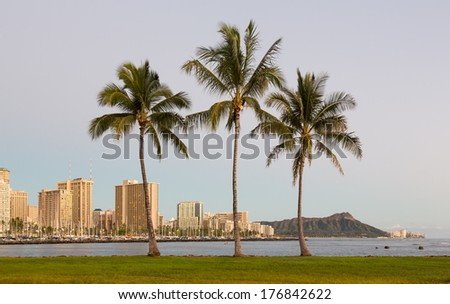 Panorama of the skyline of Honolulu and Waikiki from Ala Moana park as the sun sets with three palm trees framing the scene - stock photo