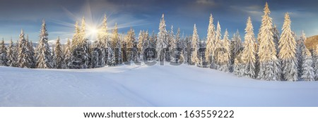 Panorama of the sunny winter landscape in the mountains - stock photo