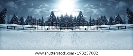 Panorama of the winter forest behind a wooden fence, lit by the rays of the sun. - stock photo