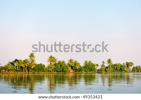 Panorama of  tropical coast with coconut palm trees