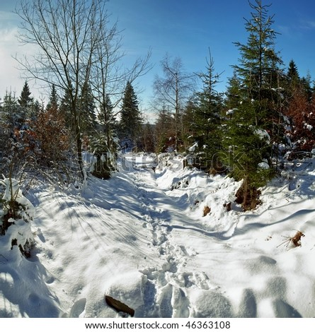 panorama of winterlandscape with first snow on a sunny day