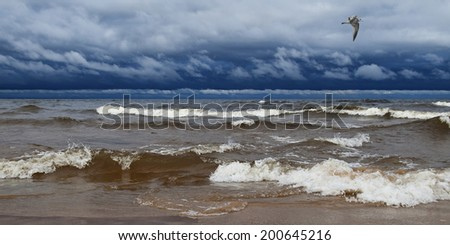 Panorama the seashore and a flying seagull during a storm. - stock photo