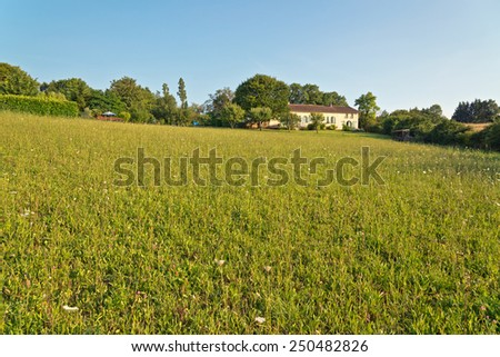 Panorama View of Green Field with a House Afar on a Sunny Climate Under Light Blue Sky Background. - stock photo