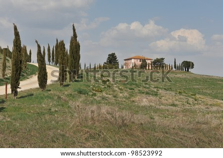 Panorama with Cypresses, image of typical tuscan landscape