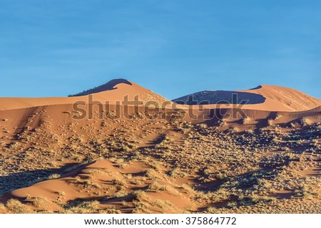 Panorama with dunes on the Sossusvlei plato of the Namib Naukluft National Park - Namibia, South Africa