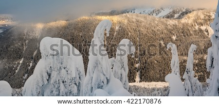 Panoramic at Stevens Pass Mountain, Washington State . Orange Sky Sunset in a Snowy Frozen Forest of Evergreen Trees