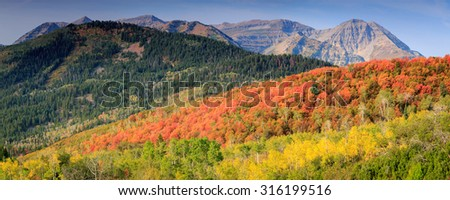 Panoramic fall landscape in the Wasatch Back, Utah, USA.