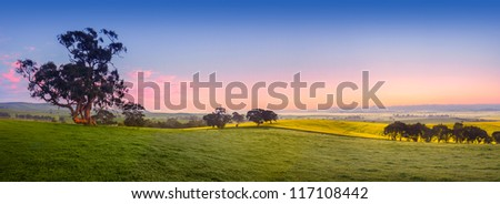 Panoramic field in the Clare Valley, South Australia - stock photo