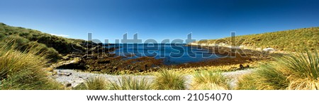 Panoramic Image on Kidney Island, Falkland Islands - stock photo
