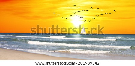 panoramic landscape of a sunset in the sea - stock photo