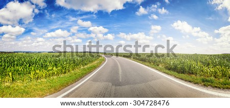 Panoramic landscape with country road and corn fields. Nature background - stock photo