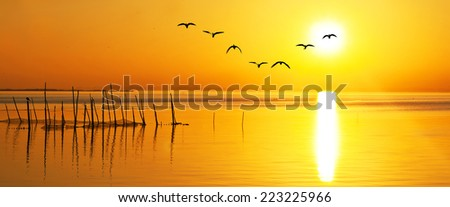 Panoramic of a calm lake at sunrise - stock photo