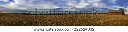 panoramic of cornfield and barn at harvest time in Indiana - stock photo