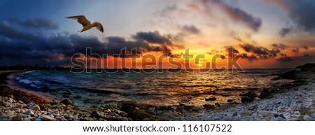 Panoramic orange  bright sunset under the sea - stock photo