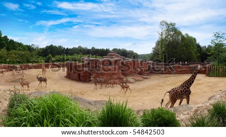panoramic scenery with giraffes and springbok on blue sky - stock photo