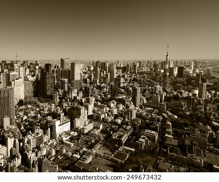 Panoramic skyline of Tokyo city.   - stock photo