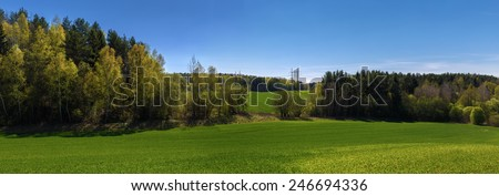 Panoramic summer landscape with blue sky, green field and forest. - stock photo