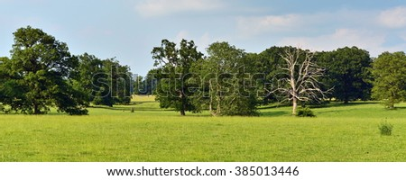 Panoramic View of a Beautiful Farm Field Landscape in Summer - stock photo