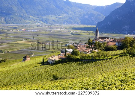 Panoramic view of a vineyard in Alto Adige (Italy) - stock photo