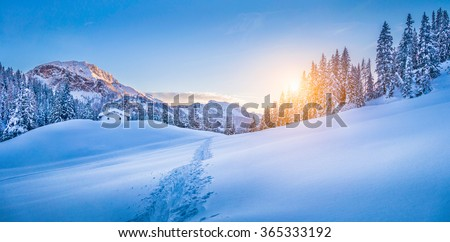 Panoramic view of beautiful winter wonderland mountain scenery with traditional mountain cabin the background in the Alps in golden evening light at sunset - stock photo