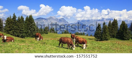 Panoramic view of french Alps - stock photo