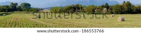 Panoramic view of hay rolls field background mountains - stock photo