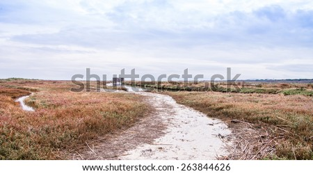 Panoramic view of natural oasis near the sea with the beautiful colors of the vegetation - stock photo
