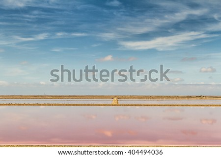 Panoramic view of Saline Drip - Camargue - Salin de Giraud  - stock photo