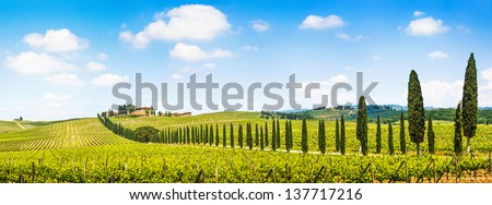 Panoramic view of scenic Tuscany landscape with vineyard in the Chianti region, Tuscany, Italy - stock photo