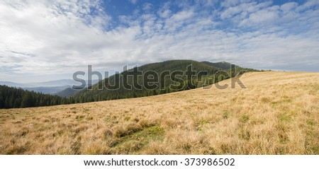 Panoramic view of the plains and mountains. Carpathians - stock photo