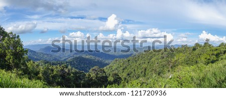 Panoramic view of vast tropical forest in Malaysia - stock photo
