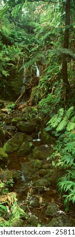 Panoramic view of waterfalls and rainforest in Akaka Falls State Park, Hawaii - stock photo