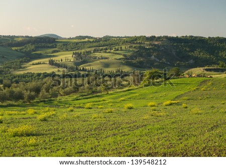 Panoramic view on field in Tuscan landscape with a lane of cypress trees in the background - stock photo