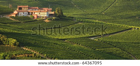 Panoramic view on rural house among vineyards in Piedmont, Italy. - stock photo