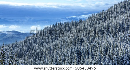 Panoramic view over Carpathian Mountains in wintertime.